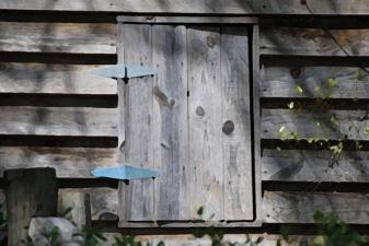 Window-painting_thumb.jpg